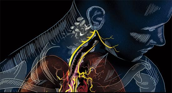 cesultra-ear-nerve